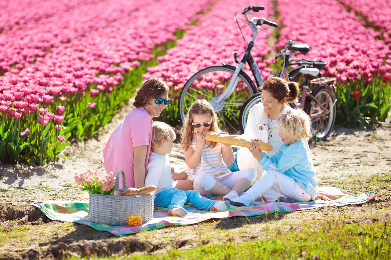 family relocated to the Netherlands in a tulip field
